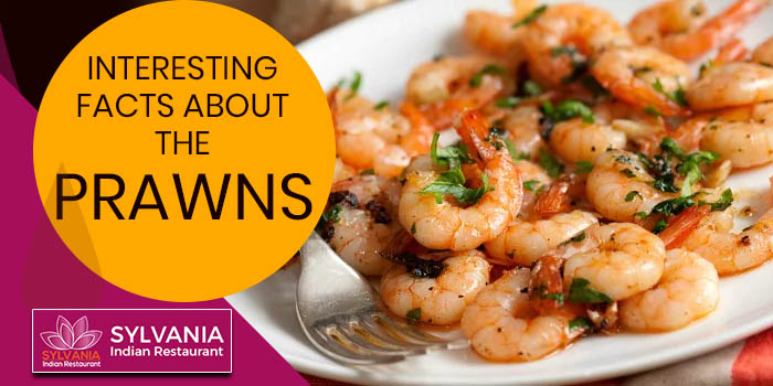 Interesting facts about the prawns