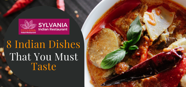 Sylvania restaurant lists 8 Indian dishes that every food craves for